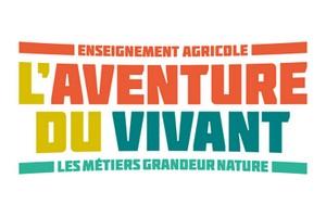 logo-aventure-300x200-1