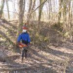 Abattage et billonnage au Parc Naturel Régional du Luberon