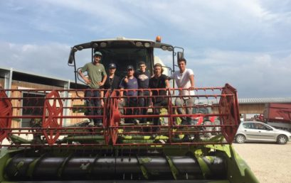 Moisson soja avec les BP Agroéquipement